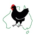 The FREPA logo is proof of real free range eggs